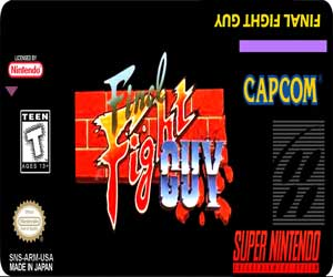 Final Fight Guy Snes Online