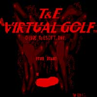 T&E Virtual Golf