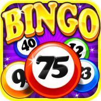 Bingo Social